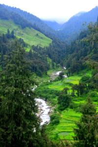 bir billing paragliding rajgundha (26)