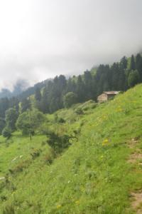bir billing paragliding rajgundha (36)