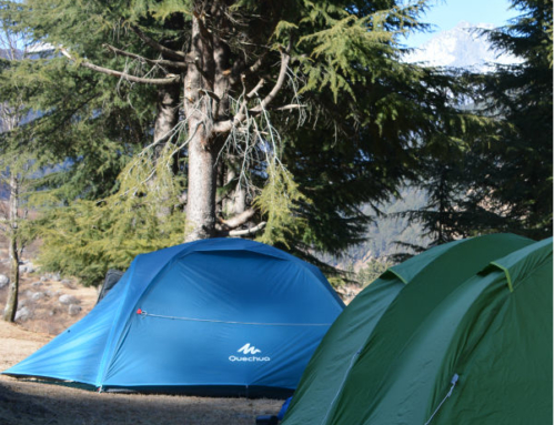 Camping in Rajgundha Valley